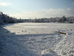 Tilgate Lake frozen.