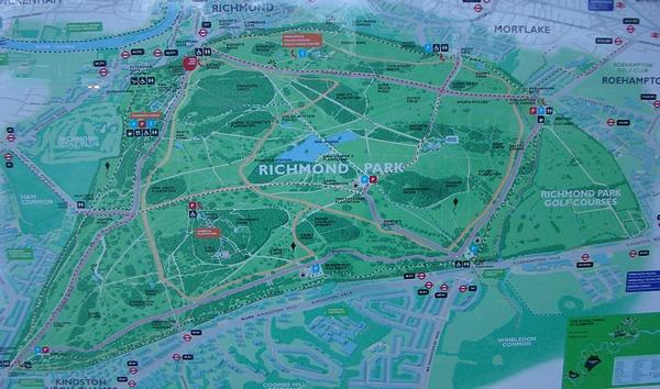 081108 Richmond Park