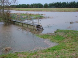 The foot bridge on Pulborough Brooks